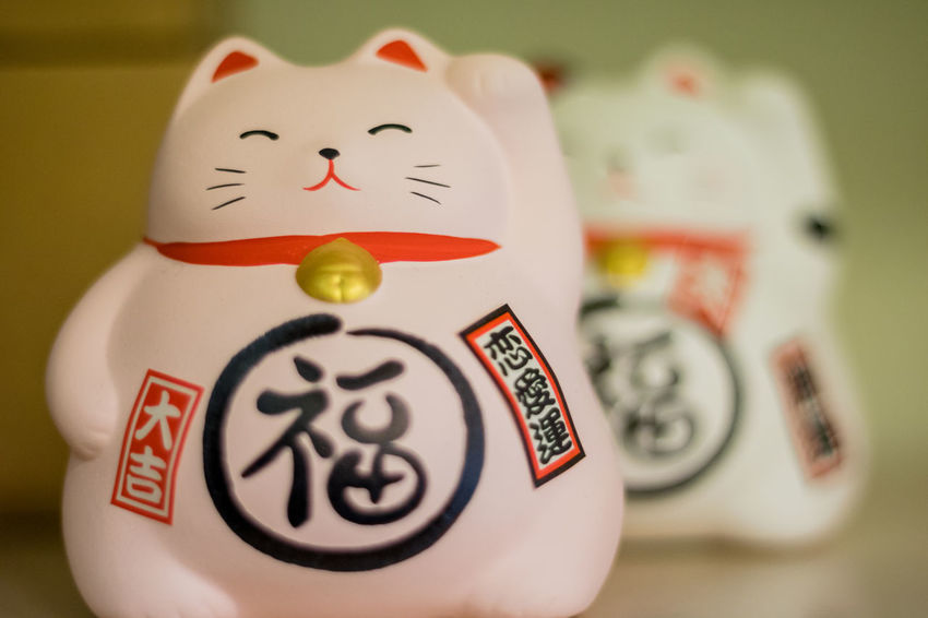 Close-up Indoors  No People Day Cat Luck Lucky Cats Lucky Cat China Chinese Pink Full Frame Childhood Memories Good Fortune Animal Themes Colors Background Wallpaper