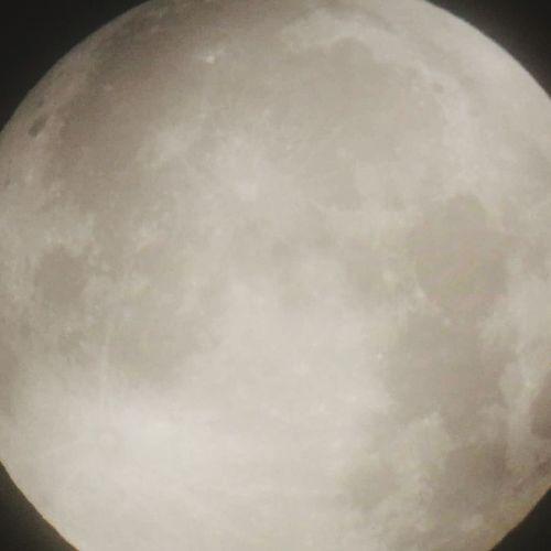 moon Luna Lunar Eclipse Moon Space Space And Astronomy Celestron Black Background Studio Shot Close-up