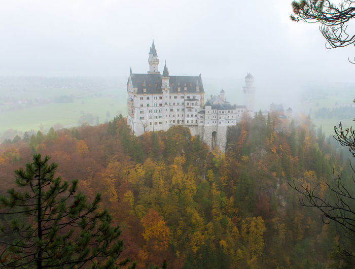 Neuschwanstein Castle with Autumn colors, Fussen, German Tree Building Exterior Architecture Built Structure Fog Plant Nature Building Autumn No People Day Change Sky Outdoors History The Past Residential District Growth City