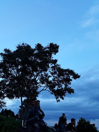 Tree Blue Nature Beauty In Nature Outdoors Silhouette Sky Day Close-up Indoors  Eye4photography  Beauty In Nature EyeEm Nature Lover Balikpapan View, East Borneo Gadgetgrapher Ig_photooftheday Livefolkindonesia Traveling Home For The Holidays Indonesia_photography Water Reflections Transportation EyeEm Best Shots