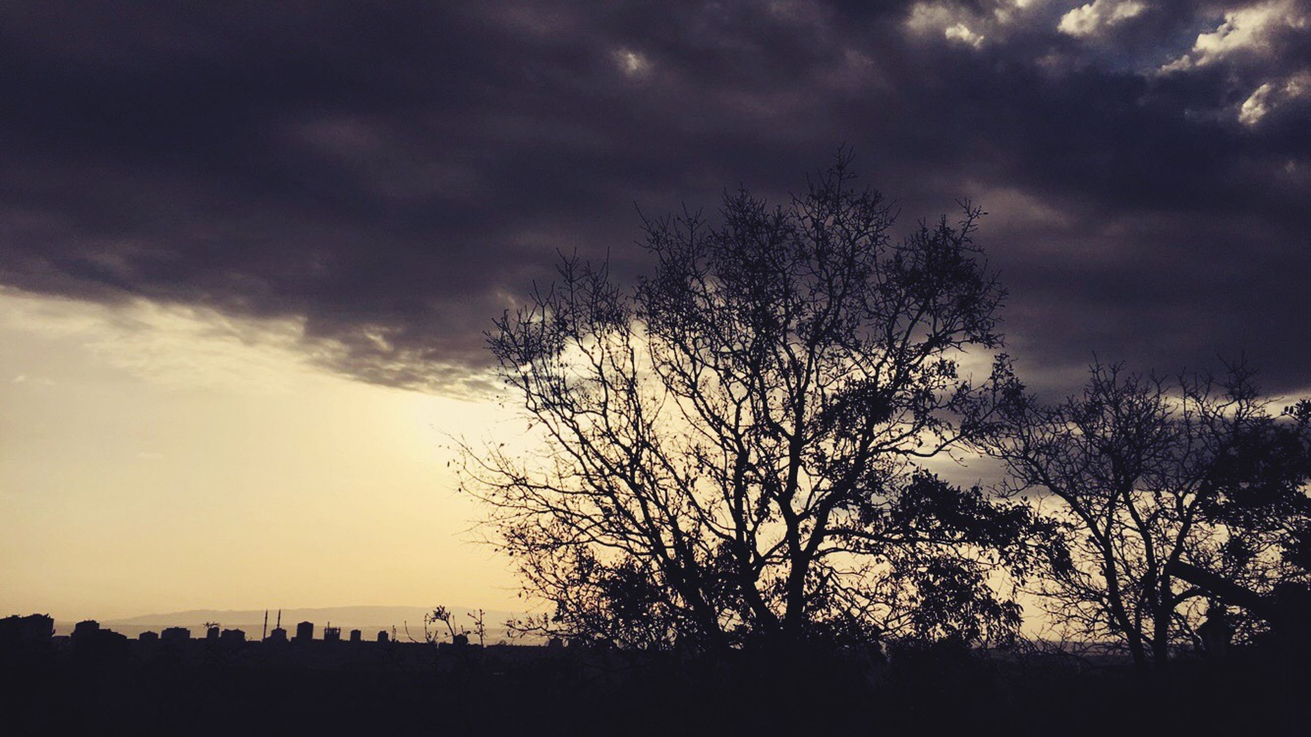 silhouette, sky, tree, sunset, tranquility, tranquil scene, beauty in nature, scenics, cloud - sky, bare tree, nature, landscape, branch, cloudy, cloud, idyllic, field, dusk, low angle view, dramatic sky