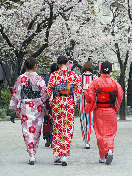 Casual Clothing Cultures Full Length Japan Japanese  Japanese Culture Kimomo Kimono Leisure Activity Lifestyles Medium Group Of People Outdoors Red Tokyo Tree Girl Power Traditional Traditional Culture Traditional Clothing Kimonos Ultimate Japan Battle Of The Cities