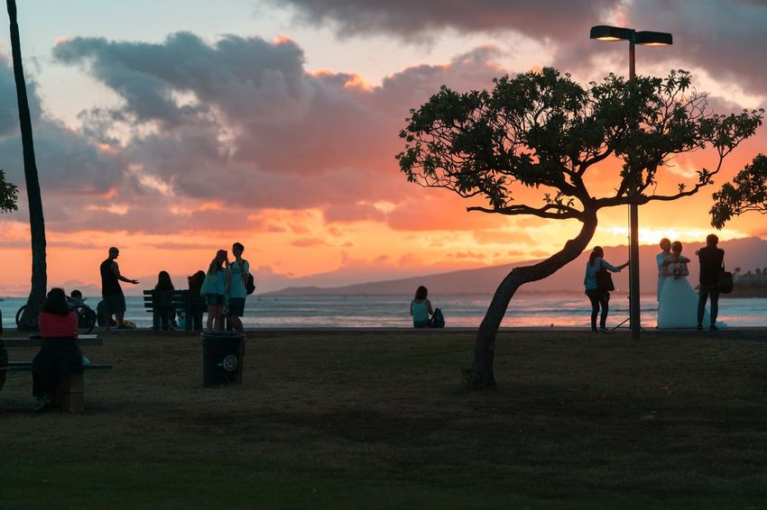 Sunset Sky Beach Nature Leisure Activity Lifestyles Large Group Of People Sea Tree Real People Beauty In Nature Men Cloud - Sky Water Silhouette Outdoors Scenics Women Horizon Over Water Togetherness