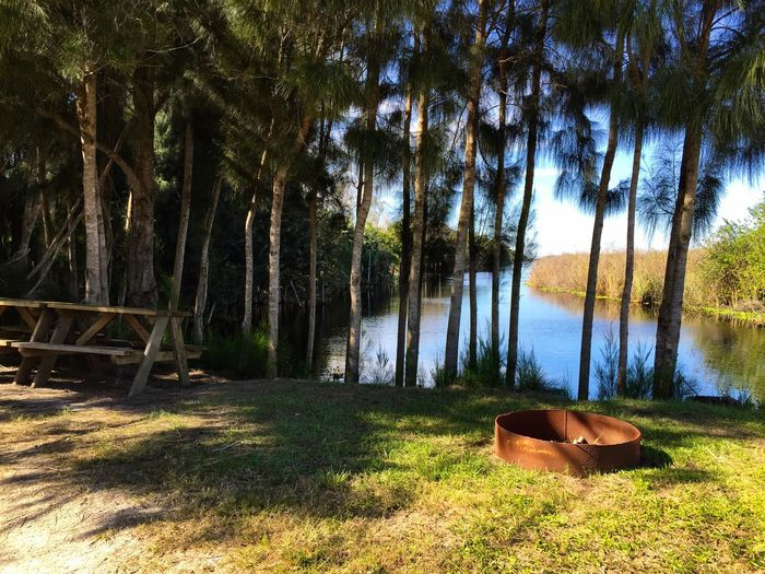 Camp Site on a canal St Johns River Florida River Pines Picnic Table Camping Melbourne Nature's Diversities