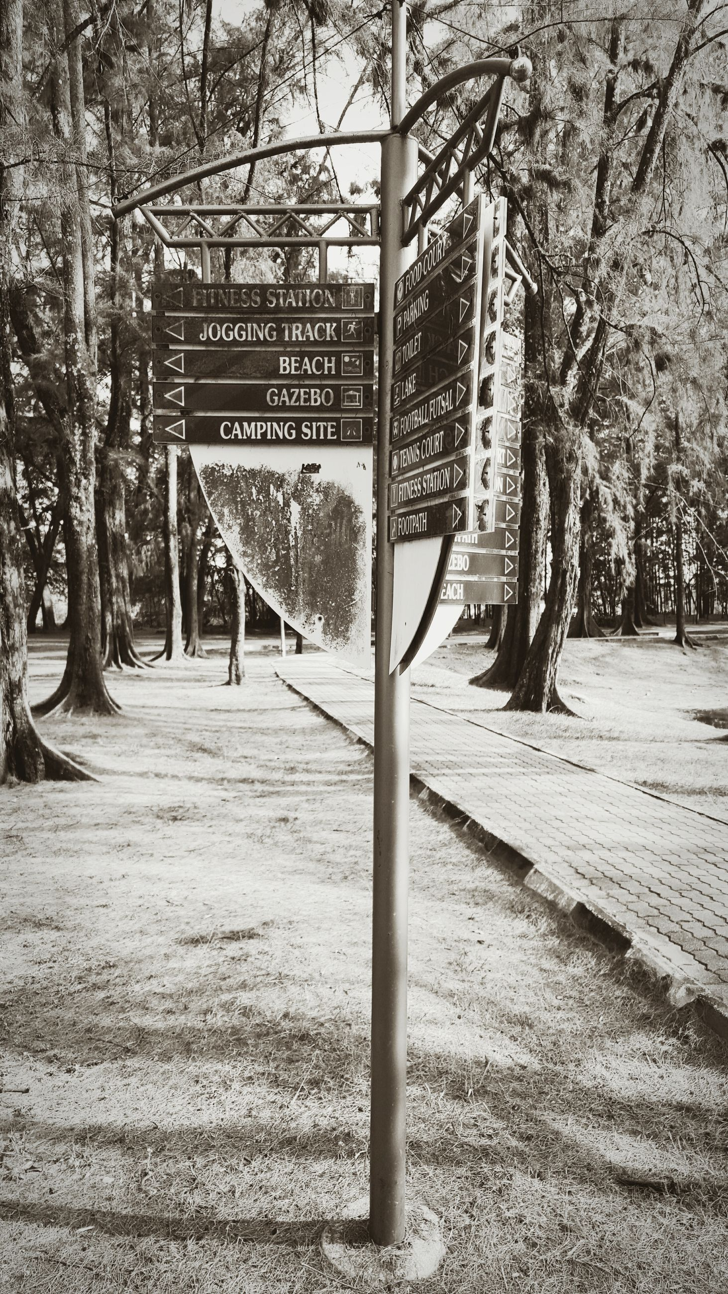 tree, bare tree, text, tree trunk, fence, empty, the way forward, day, communication, park - man made space, shadow, sunlight, branch, absence, western script, transportation, outdoors, built structure, safety, footpath