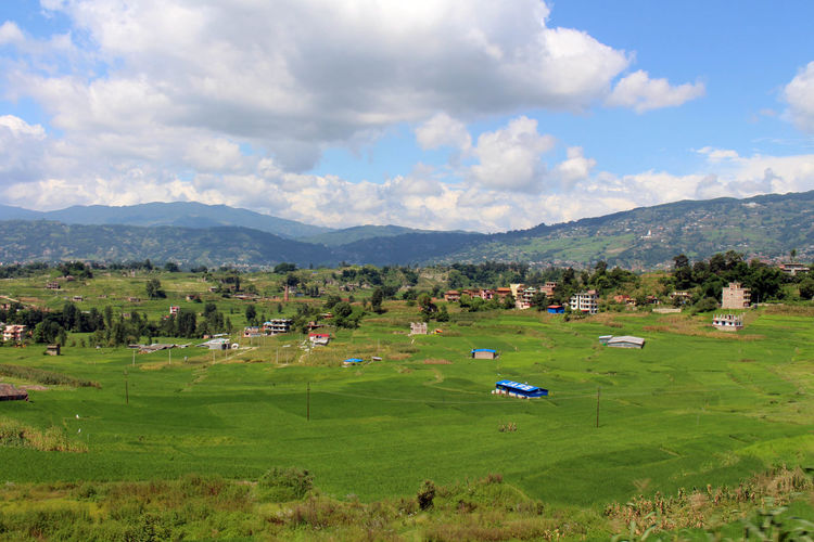 Scenic view of field and houses against sky