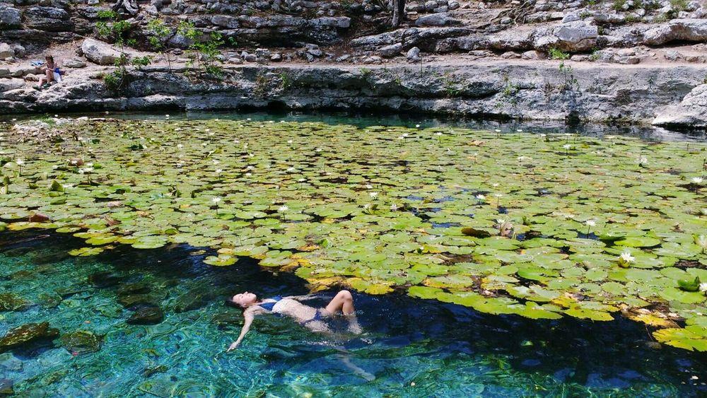 Cenotes Dzibilchaltun Dzibilchantun Cultura Maya