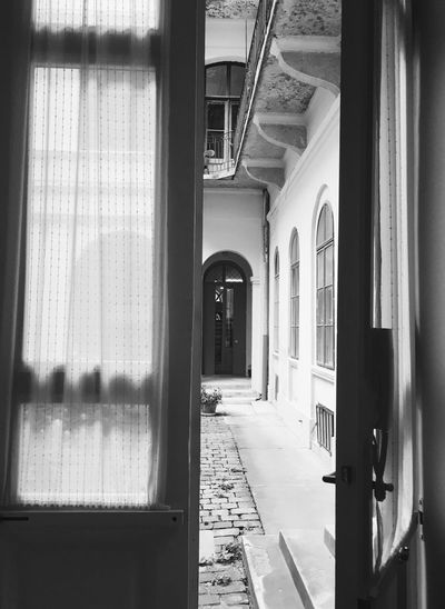 Window Door Architecture Garden Day Doorway No People Open Door Dream Invitation Unknown Glass Mistery Shadows Curtain Expect Intention Presence Absence Waiting Leaving Good Buy Await Home Backyard Black And White Friday
