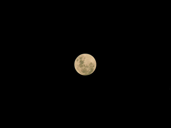 Astronomy Beauty In Nature Circle Clear Sky Copy Space Dark Dreamlike Ethereal Exploration Full Moon Idyllic Low Angle View Majestic Moon Moon Mystery Nature Night Outdoors Planetary Moon Scenics Sky Sky Only Tranquil Scene Tranquility