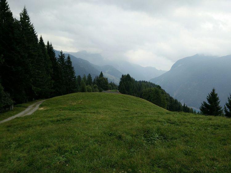 Green field Sauris Mountain Clouds Summer End