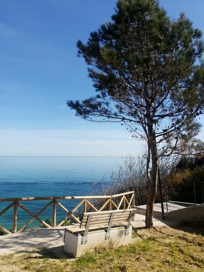 Panoramic View Panoramic Point Sea And Sky Passeggiata Garden On The Sea Tree Water Sea Beach Clear Sky Sand Sky Horizon Over Water Landscape Seascape Coastline