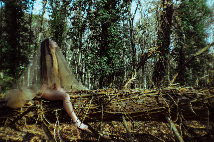 Side View Of Young Woman Covered In Tulle Netting While Sitting At Forest