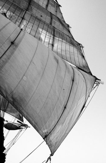 A trip on the 3 Mats Barque Belem back in June 2014. We sailed between Marseilles and Nice. Blackandwhite Bnw Bnw_friday_eyeemchallenge Bnw_society Canvas Clear Sky Day Destination France Full Lifeatsea Low Angle View Mediterranean  Mediterranean Sea Outdoors Sail Sailing Sailing Ship Sailor Sea Ship Summer Tallship The Belem Travel