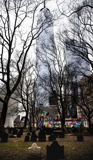 Urban Architecture City Life New York New York City Tree Bare Tree Building Exterior Tombstone Cemetery No People Religion Stone Building Outdoors City