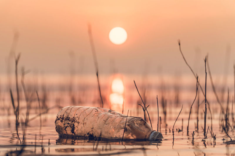 Water Sunset Nature Sky Sun Outdoors Pollution Garbage Plastic