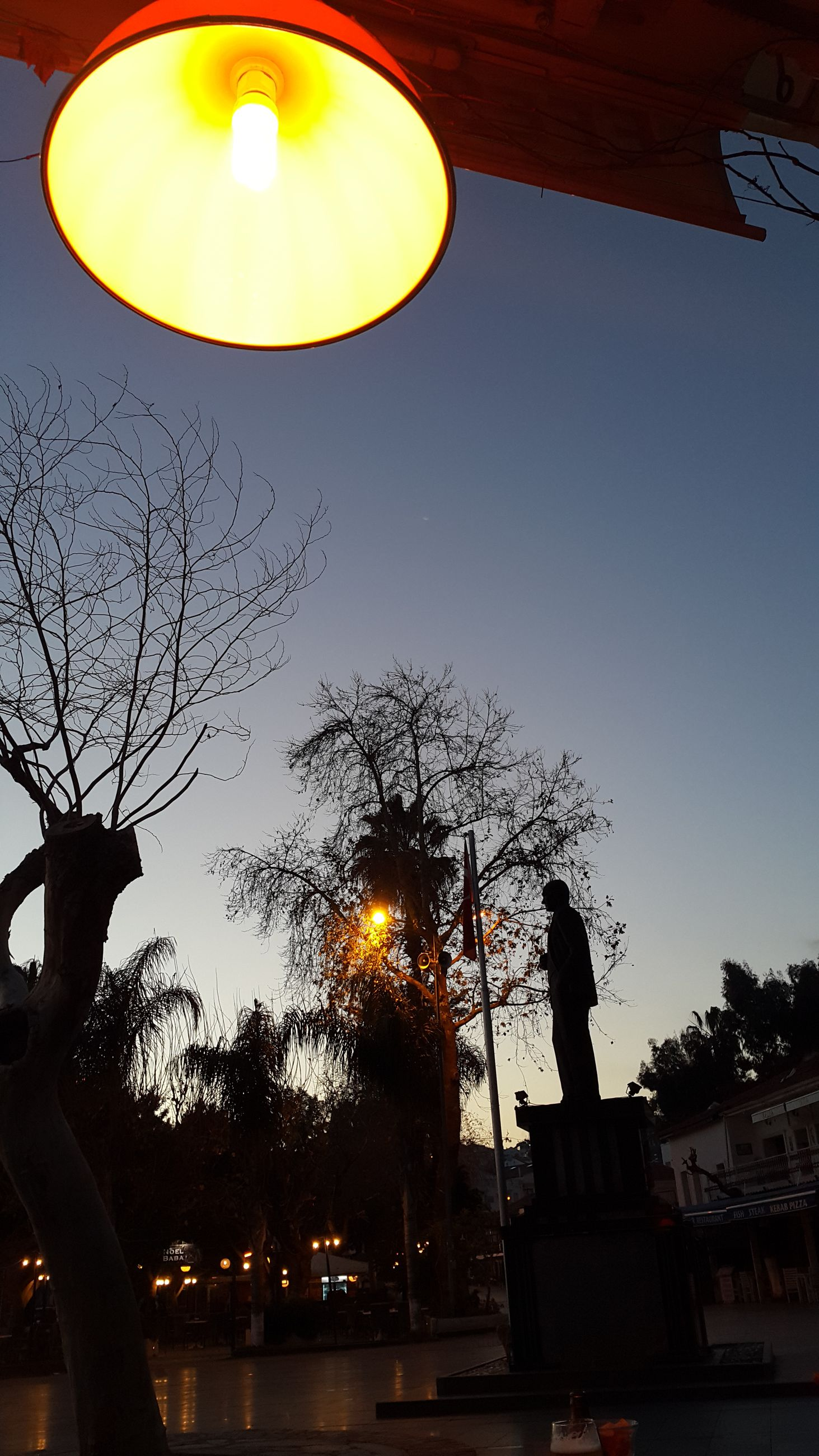 tree, building exterior, low angle view, built structure, architecture, street light, illuminated, clear sky, sunset, lighting equipment, silhouette, sun, city, sky, branch, growth, sunlight, outdoors, glowing, night