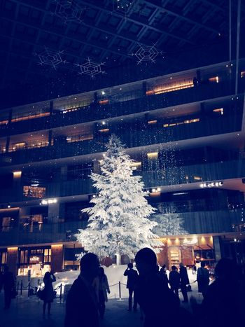 Tokyo KITTE Christmas Tree Winter