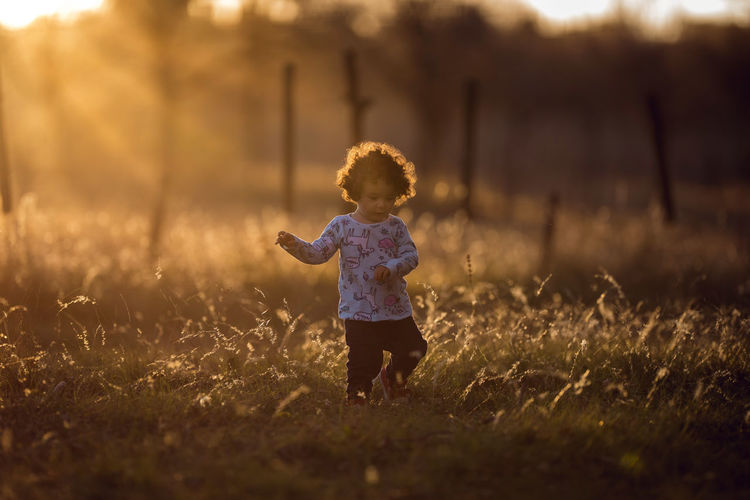 Casual Clothing Child Childhood Contemplation Day Field Full Length Grass Innocence Land Males  Nature Offspring One Person Outdoors Plant Standing Sunlight Sunset