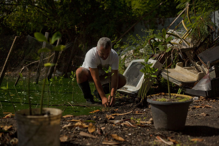 """In the backyard, unable to leave with his boat because of the improper conditions of the lagoon, Ze does not stop reforesting the lagoon, he has planted 109,000 feet Rhizophora (mangrove plant on the banks that functions as a filtering element). The Ze and the lagoon. """" worst garbage is not the worst garbage is, throw this garbage ... """", this is how José Cavalcante, better known as Zé da Rádio by the regions of the Tijuca bar, describes how people contribute without a kind of garbage protection in the lagoons of the region. Pernambucano radio announcer lover of nature lives in Rio 27, decided to 5 years in Jacarepaguá beach to clean it. Zé da Rádio (45) lives with his family, his wife Barbara (20) and their two children, 3 and 5 years old, 2 dogs, 10 chickens and an Indian cockerel in a precarious house overlooking the Jacarepaguá lagoon Barra da Tijuca, district of the western zone of Rio de Janeiro. With his boat moored in the backyard of the house he goes out to wade through a pond in search of the garbage trapped on the morning and afternoon rides took 30 tons a month of recyclable materials, such as plastic bottles, chairs and plastic toys, and others not as disposable as the sofa, mattress, tube TV (analog) or a project created on Facebook with a million views a month: """"Voice of the ponds,"""" """"with help from his wife,"""" """"shows a pollution situation that is linked to population attention and funding."""" its activity of cleaning and reforestation of the lagoon, where until now is planted 109 meters by Rhizophora (mangrove plant on the banks that functions as a filtering element). The Jacaré lagoon had its promises to shun as a Bahia de Guanabara, even more so at the Rio2016 Olympic nothing has been done so the influx of different regions of the region, what happened to the communities that arrived with greater intensity at the same time as the program of treatment of sewage emanating air sulfidrico gas highly toxic to the human being appearing the following day tilan"""