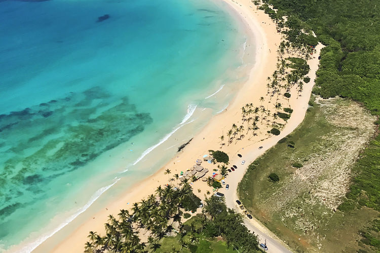 Aerial view of the tropical beach Water Sea Beach Land High Angle View Scenics - Nature Nature Beauty In Nature Day Outdoors Aerial View Sand Coastline Tranquil Scene Transportation Turquoise Colored Landscape Ocean Dominican Republic Tropical Climate Tropical Paradise Travel Travel Destinations Vacations Summer My Best Photo