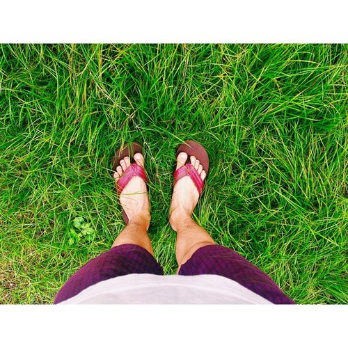 Step on the green green grass early in the morning. FeelingFresh  😌