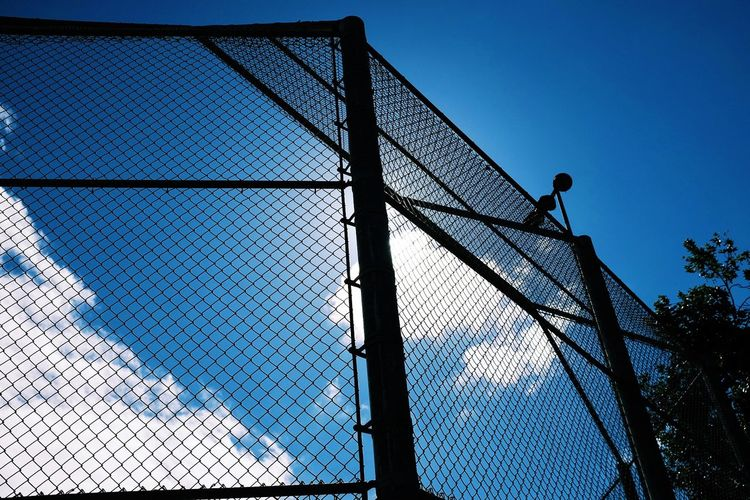 Baseball Architecture Backstop Baseball Diamond Baseball Field Blue Built Structure City Clouds Day Low Angle View Modern No People Outdoors Sky Sport Sports Sunshine Tree