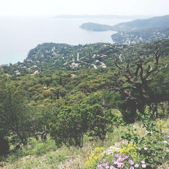 Dur de trouver des singles intéressants quand on connait pas mais au moins il y a la vue Côte D'Azur Lavandou Mer Montagne VTT MTB Méditerranée
