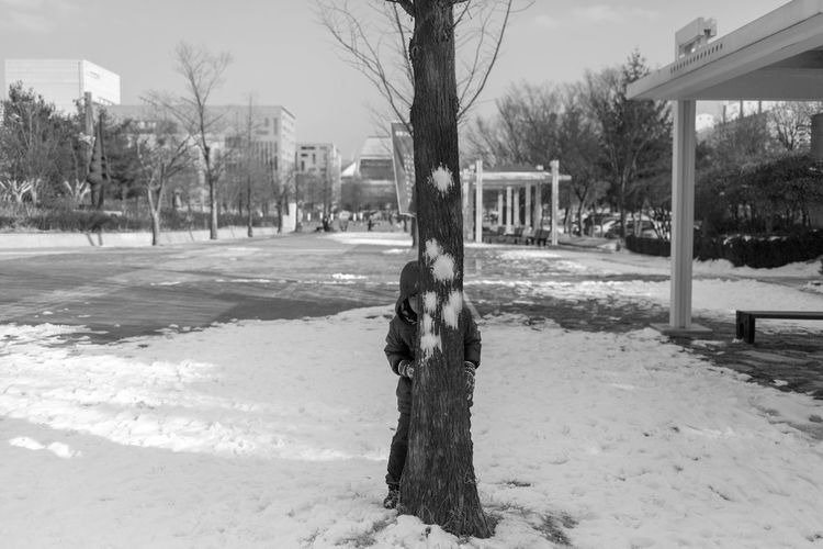 Architecture Bare Tree Building Exterior Built Structure Cold Temperature Day Nature No People Outdoors Sky Snow Snowball Fight Tree Tree Trunk Winter Shades Of Winter Shades Of Winter