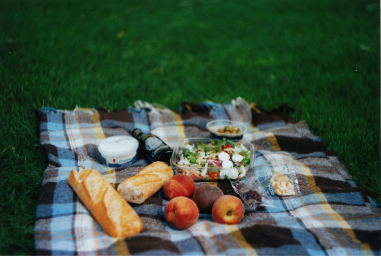 Food On Picnic Blanket At Park
