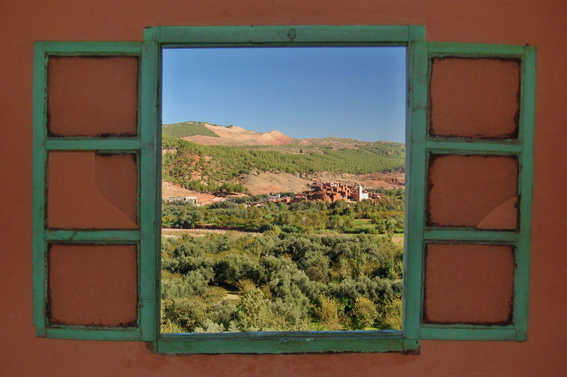 Green landscape seen through window