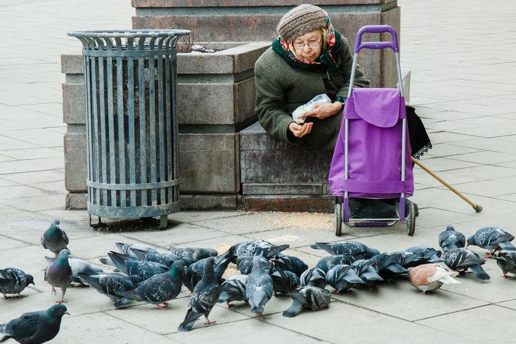 Senior Woman Feeding Pigeons On Footpath In City