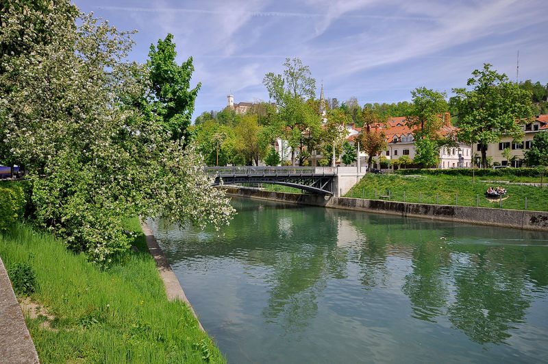 Architecture Bridge - Man Made Structure Built Structure Canal City Cityscapes Cloud Cloud - Sky Day Green Green Capital Green Capital Of Europe 2016 Ljubljana Ljubljana Castle Ljubljanica Ljubljanski Grad My Commute No People Outdoors River Sky The Architect - 2016 EyeEm Awards The Great Outdoors - 2016 EyeEm Awards Tree Water