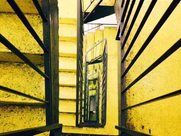 Yellow | Black