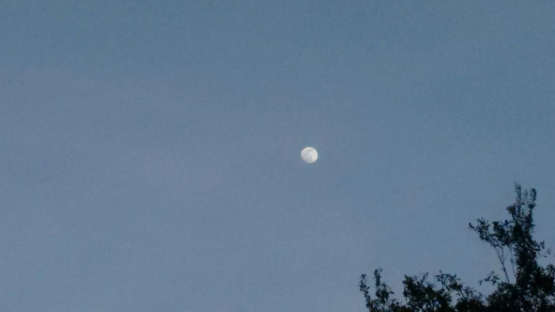 Lua bacaca. Moon Pordosol