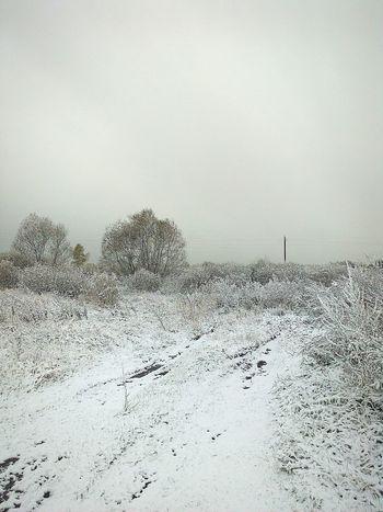 Russia Ryazan Winter