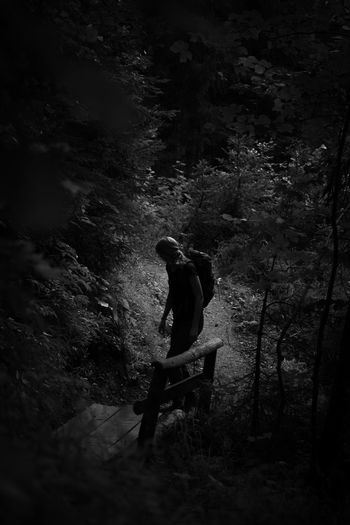 Rear view of man sitting in forest