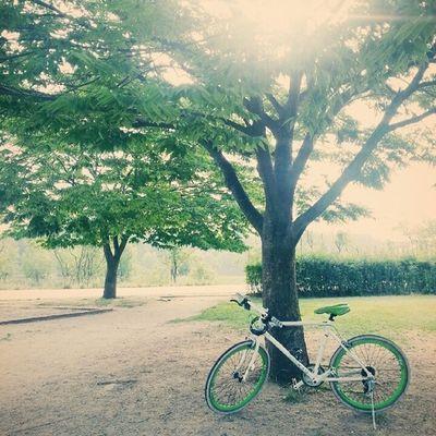 아침 라이딩 Riding 자전거 자전거도로 bicycle 한강 hanriver 선유도공원
