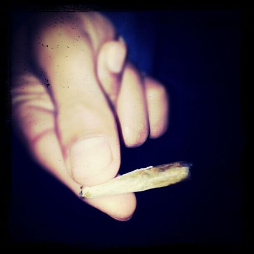 high life is the best life.