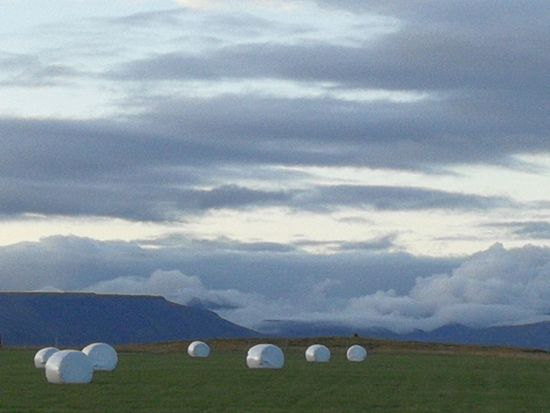 The Purist (no Edit, No Filter) Sky Grass Bale  Agricultural Field