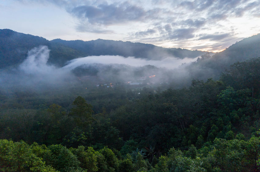 Broga Beauty In Nature Cloud - Sky Fog Foggy Morning Forest Malaysia Scenery Morning View Mountain Non-urban Scene Outdoors Scenics - Nature Tranquil Scene Tranquility