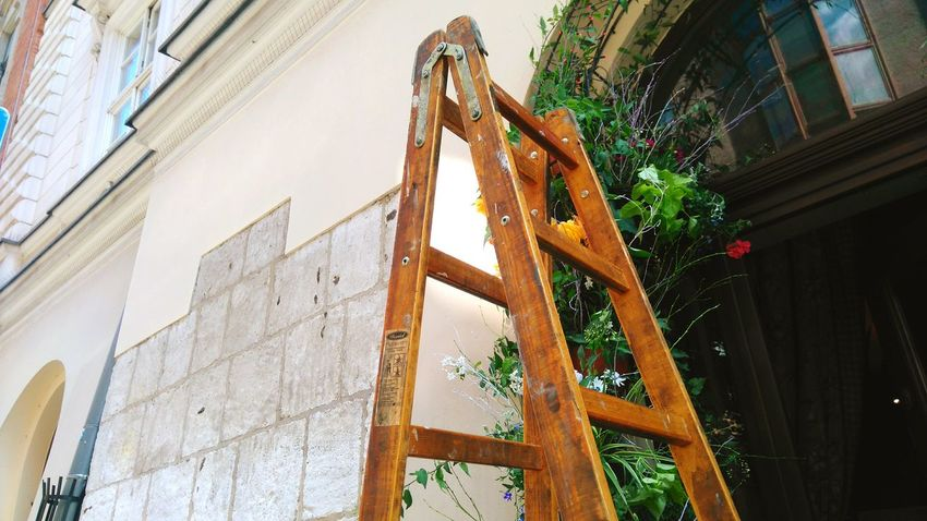 Ladder Old Vintage Nature Poland Polska Krakow Cracow Urban Spring Fever The Architect - 2016 EyeEm Awards Hidden Gems