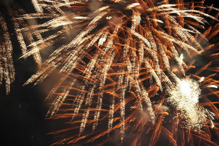 4th Of July 2016 Celebration Firework Display Fireworks Illuminated Illumination Night Sky 43 Golden Moments