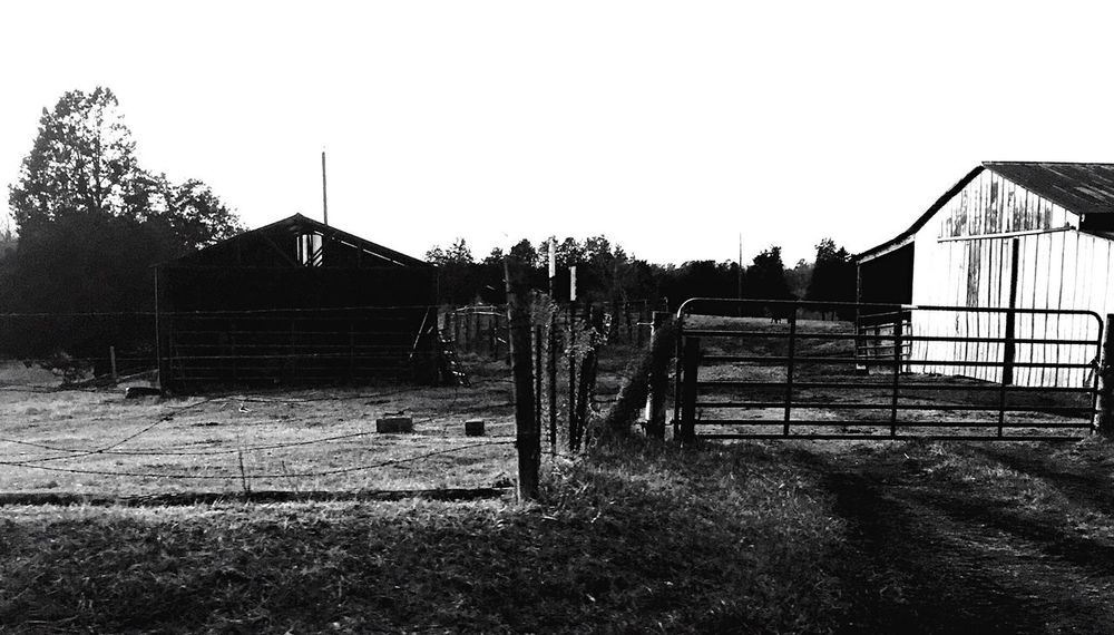 Blackandwhite Black And White Blackandwhite Photography Black & White Photography Photo Photooftheday Photographer Contrast Rural Scene Rural Farm Farm Life Countryside Nature Nature_collection Nature Photography Nature On Your Doorstep Natural Beauty Natural Naturephotography Built Structure No People Outdoors Day