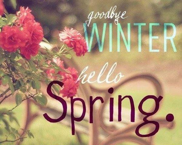 Goodbye winter 👋❄️😁hellospring 😃🌺🍃🌺🍃🌺💕😉