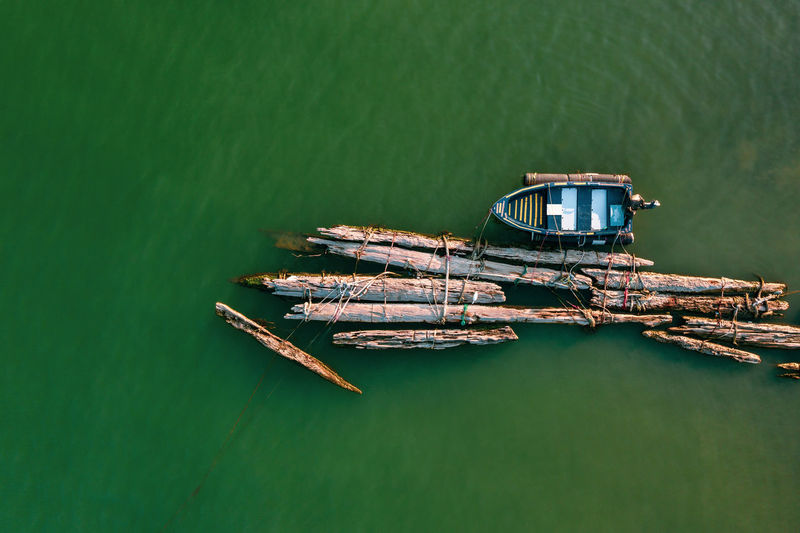 Aerial view of logs at beach