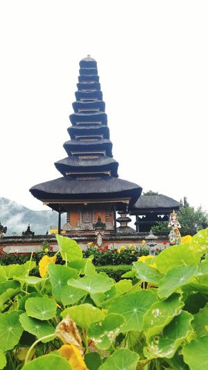 Relaxing Bali, Indonesia