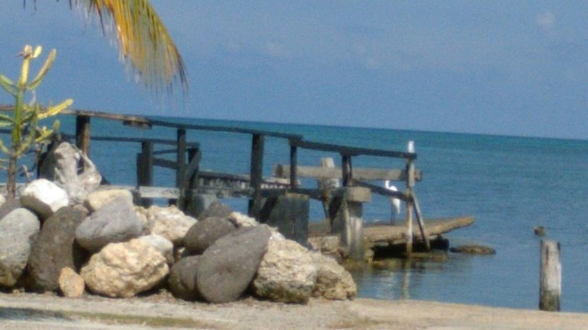 Hunny Bay Resorts Oceanside Treasures Tropical Beauty Atlantic Ocean