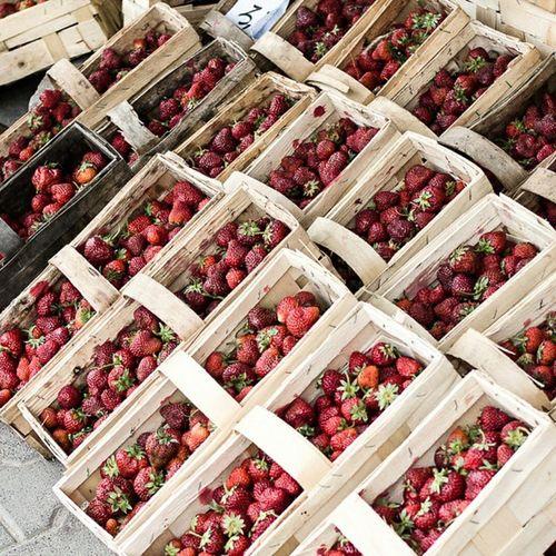 Afrodizyak tavan çilek Strawberry Red color kirmizi photooftheday istanbul fruit meyve