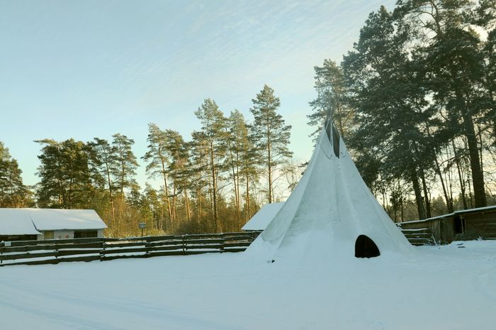 Cold Day Dogs Fire Husky Landscape Lifestyles Lithuania Natural Nature No People Nobody Outdoors Outside Park Relax Resort Ride Sunny Tale  Traditional Village Village Life Winter Wintertime