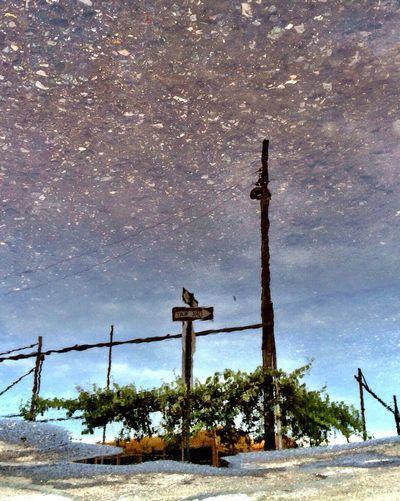 View of street light against sky